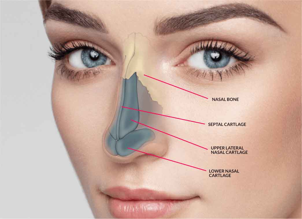 Nose cosmetic surgery 2
