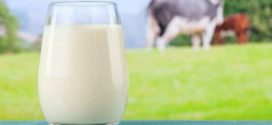 2 organic milk nutrition facts