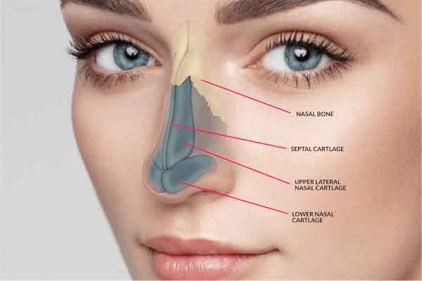 Plastic surgery for nose 3